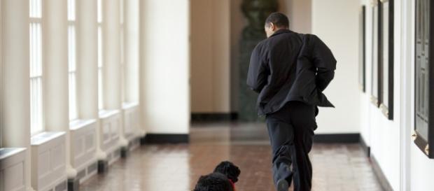 Allarme rosso alla Casa Bianca per la presenza di un uomo armato.