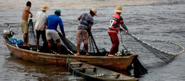 Grupo de pescadores trabalhando