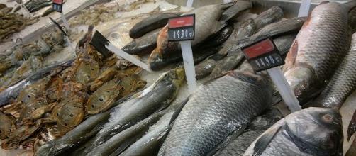 Banco del pesce: ecco i trucchi dei mercati per vendere di più.