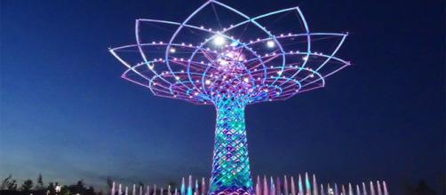 Expo riapre: le novità e gli eventi in programma