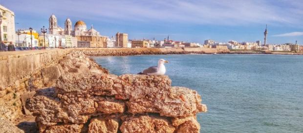 Imagen del Campo del Sur de Cádiz