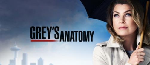 Grey's Anatomy: anticipazioni tredicesima stagione