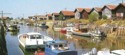 Vue sur l'un des 7 ports de Gujan-Mestras : celui de Larros.