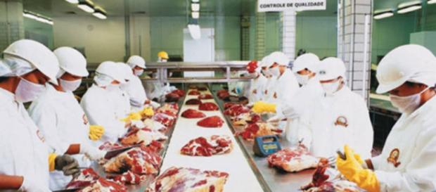 De acordo com denúncias, a indústria de alimentos da China estaria processando carne de cadáveres e enviando a países da África.