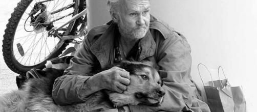Morador de rua e seu amigo inseparável, apesar das circunstâncias.