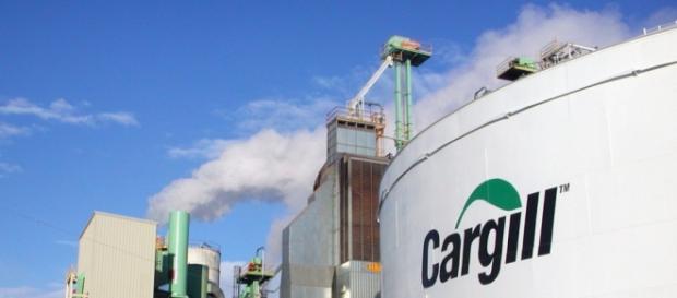Cargill com vagas em diversos estados (Imagem: Reprodução)