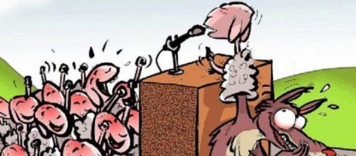 O grupo de cristãos defendem que o evangelho está sendo pregado por lobos em pele de cordeiros.