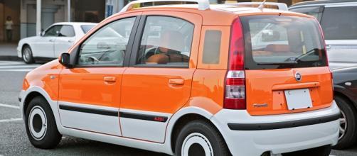 Fiat Pandazzurri, l'auto che accompagnerà la Nazionale
