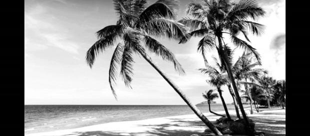 La isla en la que sus habitantes ven en blanco y negro