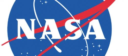 NASA oifficial logo (Credit NASA)