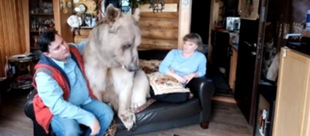 O familie din Rusia trăiește împreună cu un urs de 23 de ani Foto: captură Youtube