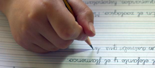 Los deberes de su hijo han sido la salvación de una mujer maltratada