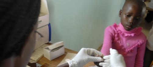 La malaria mata a medio millón de personas al año