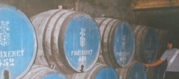 Barricas con el cava en las bodegas de Freixenet (F. del A.).