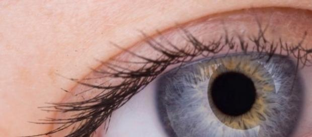 ojo bionico implantado por primera vez