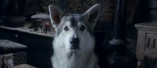 Game of Thrones, spoilers about Nymeria. Screencap: ssummit via YouTube