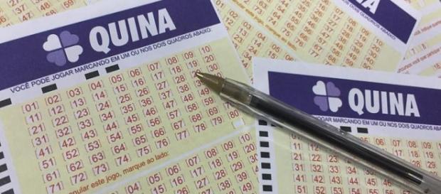 Resultado da Quina 4108 está acumulado e concurso deve pagar o prêmio de R$ 5 milhões