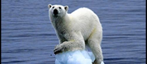 Le conseguenze dei cambiamenti climatici