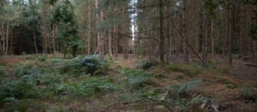 Ufo: a breve saranno svelati nuovi X-Files dal Ministero della Difesa Britannico