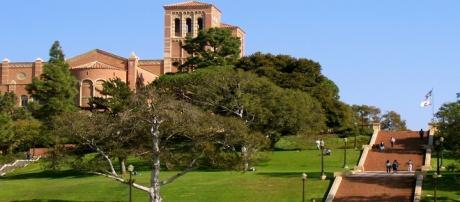 Università della California, Los Angeles