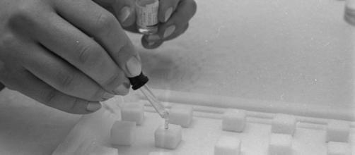 Il vaccino ideato da scienziati tedeschi fermerebbe l'espansione del tumore.