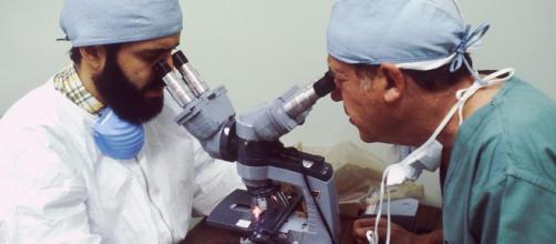 Vacuna contra el cáncer: Científicos alemanes abren la puerta a una #vacuna universal contra el #cáncer basada en la inmunoterapia