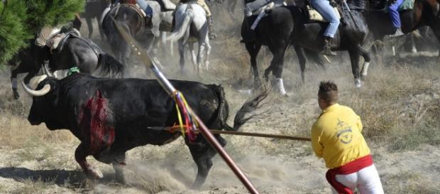 En España, esto es tradición y cultura