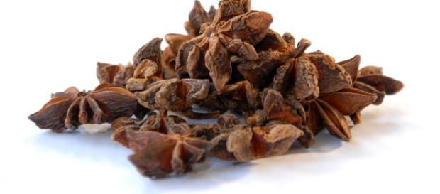 Anyż odstrasza insekty, leczy kaszel, zapobiega zmarszczkom i aromatyzuje potrawy