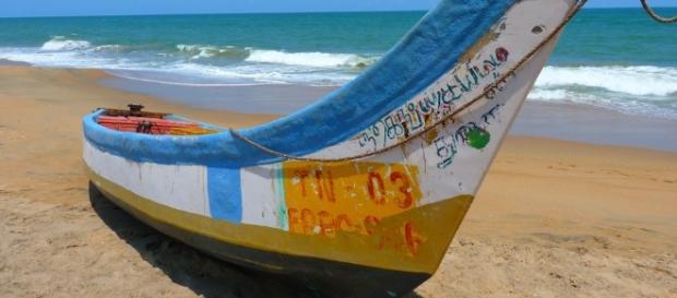 Todos os anos são milhares os ingleses que escolhem Portugal para férias