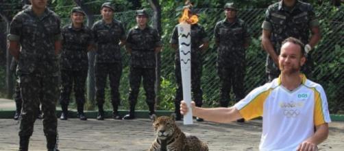 LA SEXTA TV   Matan a tiros al jaguar que acompañaba a la antorcha ...