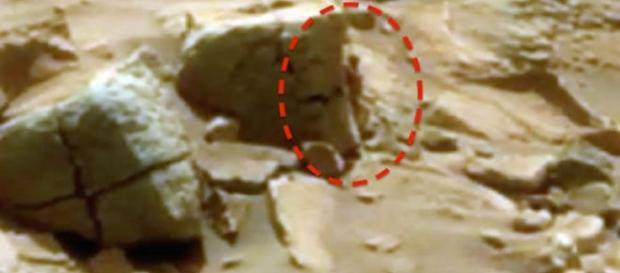 'Alien' teria sido fotografado pelo Curiosity