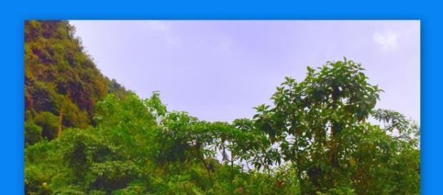 Hermosos parajes y rincones en todo el territorio ecuatoriano.