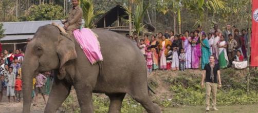La Final de Pekín Express La ruta de los elefantes.