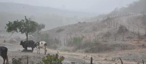 Nordeste terá volume muito grande de chuvas em 2016