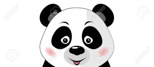 Dessin d'un tout jeune panda déjà gourmand!