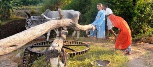 Morte de trouille, mais relevant le défi de conduire un char à âne au Rajasthan