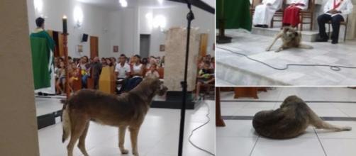 Alaíde é frequentadora das missas da Igreja Matriz em Monte Horebe, na Paraíba