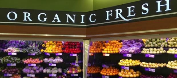 GMO or non-GMO? Courtesy of Pixabay