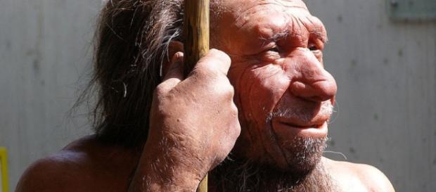 Belgian Neanderthals Were Butchering Their Dead | IFLScience - iflscience.com