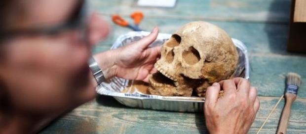 Una de las cabezas que fueron sacadas de la excavación.