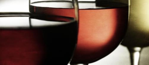 Cata visual de vinos con luz de fondo