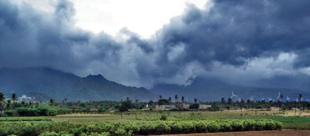 El monzón causa estragos en India central.