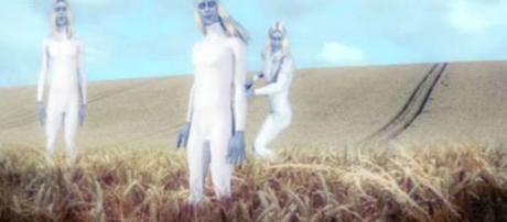 Criaturas foram descritas como altas e velozes (Youtube)