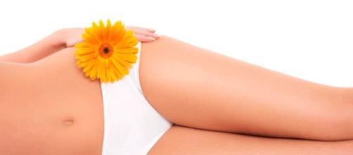 5 hierbas que te ayudan contra las infecciones vaginales - El ... - eldiariodelanena.com