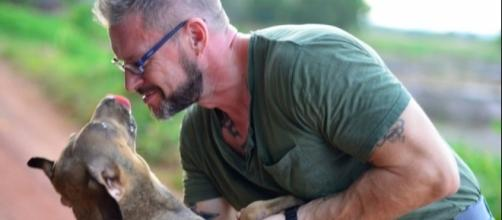 Man Fell In Love With Thailand's Stray Dogs And Now Feeds 80 Every Day - thedodo.com