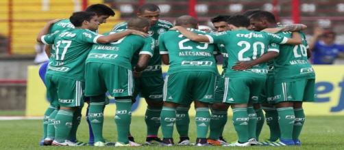 Palmeiras vem em grande fase no Brasileirão