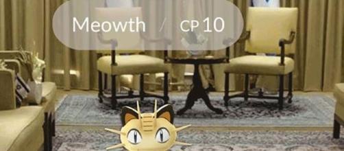 El mundo Pokémon se extiende y cada día son más sus usuarios.