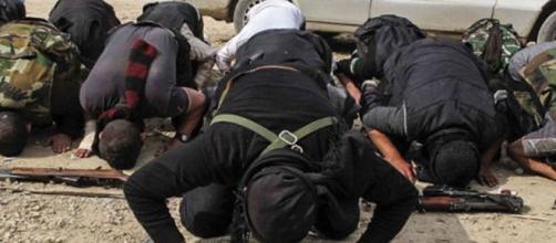 Inneggiava al terrorismo islamico: espulso dalla Marca un 39enne ... - trevisotoday.it