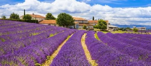 Vacances en Provence - flowercampings.com