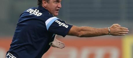 Cuca, técnico do Palmeiras, orienta o time em jogo pelo Campeonato Brasileiro